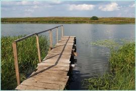 Озеро Никотино. Деревня Овинищи. Мостик над водой