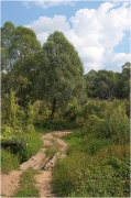 Дорога к устью Клязьмы. Деревянный мостик. Вертикальное фото