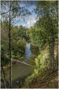 Русские леса. Фото осеннего леса. Тихая лесная речка